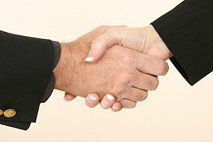Professionals shaking hands
